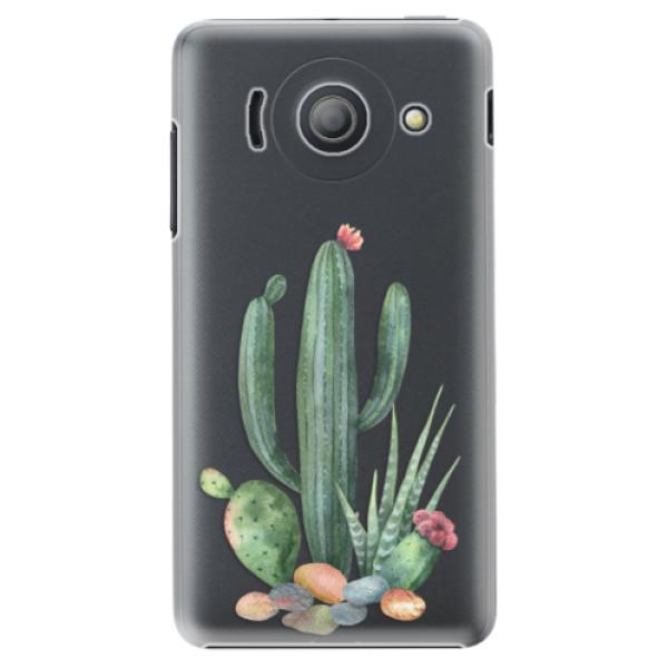 Plastové puzdro iSaprio - Cacti 02 - Huawei Ascend Y300
