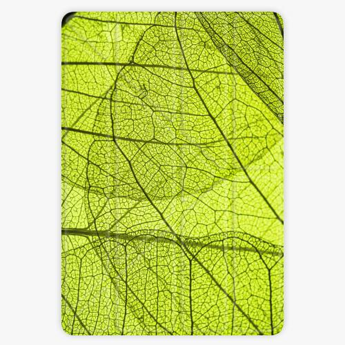 Kryt iSaprio Smart Cover na iPad - Leaves - iPad 9.7″ (2017-2018)
